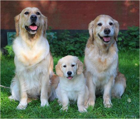 Macy, Soof & Ninthe