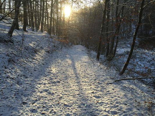 Winterlandschaft 2017