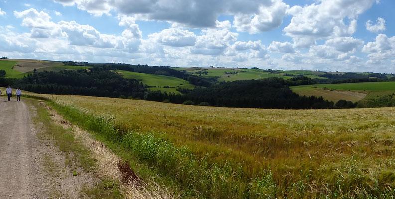 Landschaft bei Ammeldingen