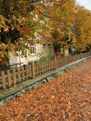 Alte Schule Herbst 2017