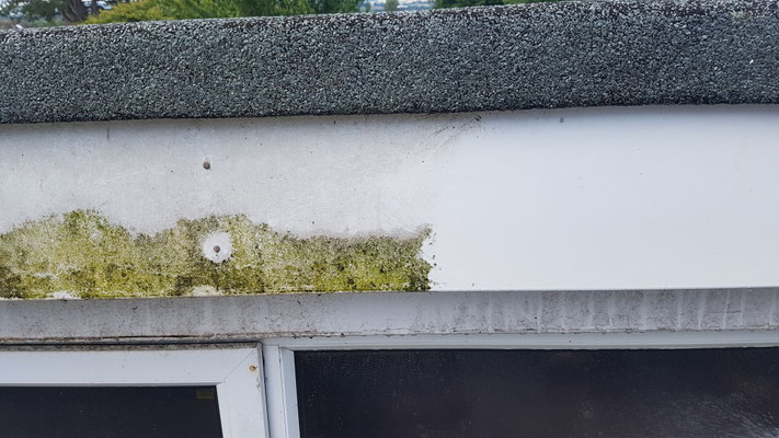 Fascia cleaning Exeter
