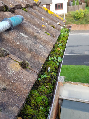 Blocked guttering