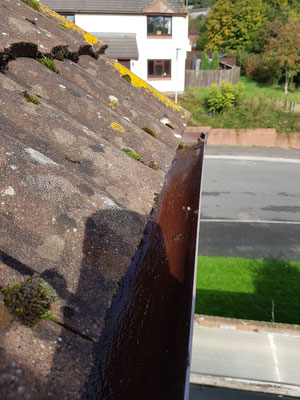 Clear gutters in Exeter