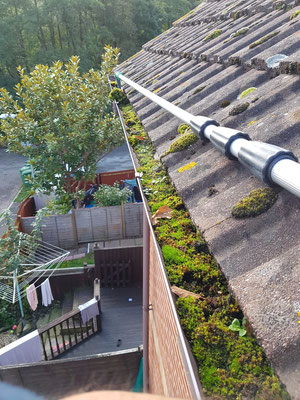 Blocked gutter full of moss being cleared