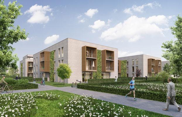 Mehrfamilienhäuser Osnabrück | gesamtwerk, Nordhorn