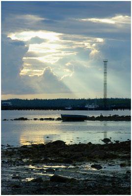 Большой Соловецкий остров, Архангельская обл. 2005 год.