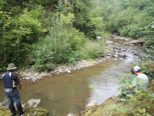 Petit ruisseau aveyronnais