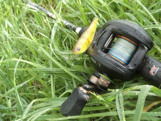 matériel de pêche sakura