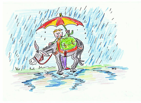 Es kommt ein heftiges Gewitter auf und dein Esel soll nicht nass werden. Du wartest mit ihm geschützt unter einem Regenschirm und darfst erst weiter gehen, wenn du eine 1, 3 oder 5 gewürfelt hast.