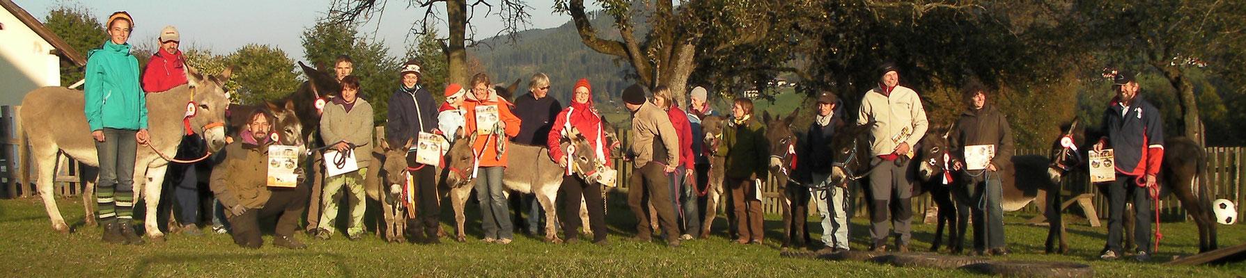 Oder wie hier: alle Teilnehmer - 14 Esel und 19 Menschen - vom Mixkurs in Österreich auf  Tschipsiländ am 15. und 16. Oktober 2011.
