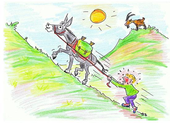 An dieser Stelle geht es sehr steil bergauf. Dein Esel schafft das mit Leichtigkeit, doch du kommst dabei ganz schön ins Schwitzen und wirst langsamer. Das kostet dich eine Runde, die du aussetzen musst.