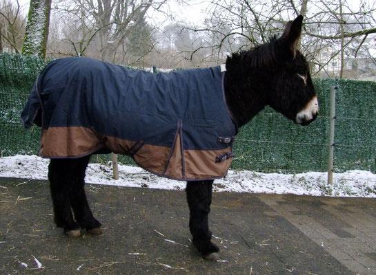Léons Regendecke hat eine 100 g Füllung und ist innen glatt.