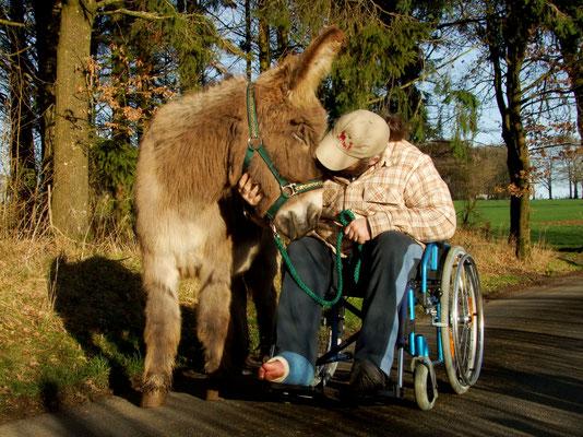 tiergestützte Aktivitäten mit Eseln