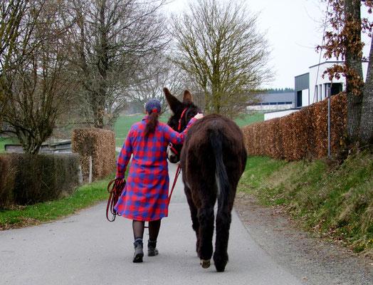 Gemeinsam unterwegs - Esel Abraham geht mit Gregor hinter uns.