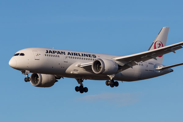 FRA 17.2.2014; JA828J; Japan Airlines Boeing 787-8