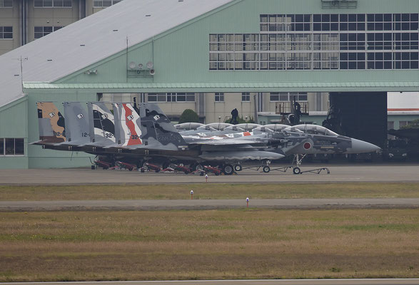 Seit 2016 sind die bunten Flugzeuge der Agressorstaffel in Komatsu stationiert.