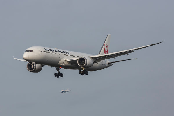FRA 18.02.2016; JA862J Japan Airlines Boeing 787-9 Dreamliner