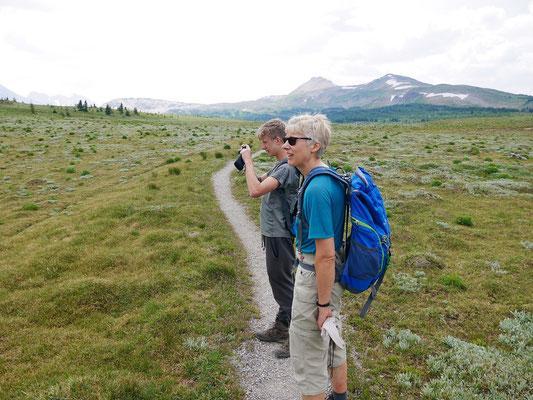 Start des Fernwanderwegs zum Mt. Assiniboine