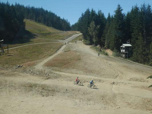 Im Sommer benutzen die Mountainbiker die Skipisten