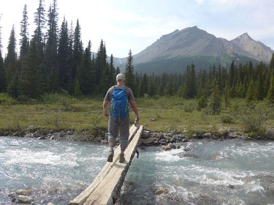 Wieder zurück über den Creek