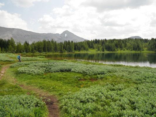 Am Howard Douglas Lake