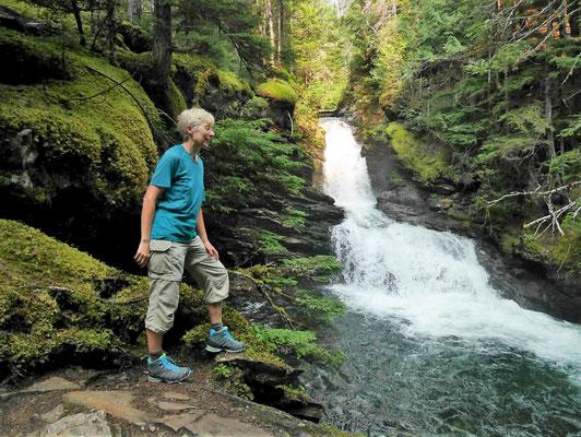 Osprey Falls, etwas im Wald gelegen