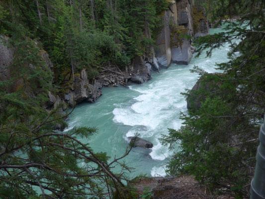 Canyon des Fraser River