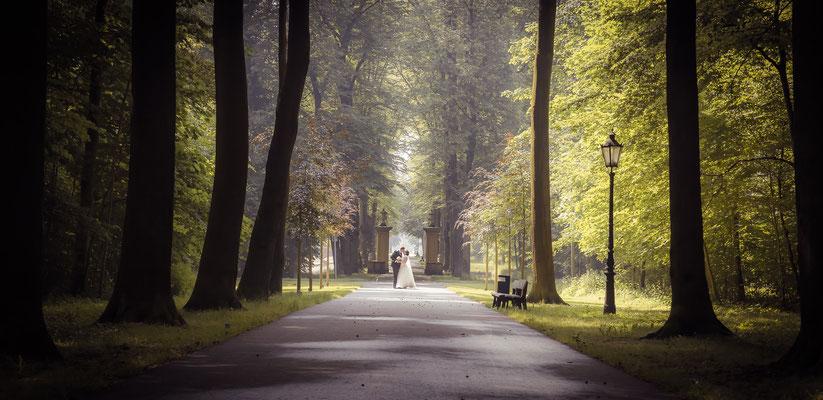 Hochzeitsfotograf Münster, NRW, Kameramann für Hochzeit