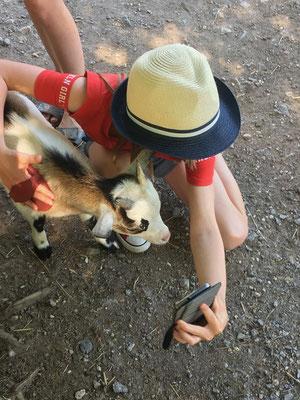 Selfie mit Ziege