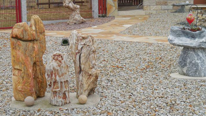 Versteinertes Holz mit Kies