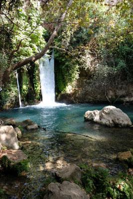 Banias Nature Reserve - Banias Falls