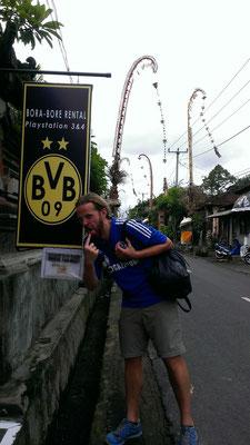 unglaublich ... auf Bali gibt es auch Zecken