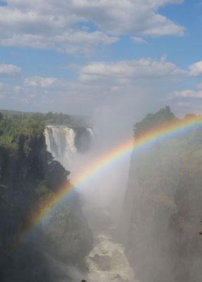 Viktoria Falls - Zimbabwe