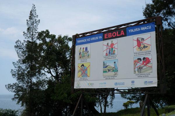 Der Kongo ist so nah!