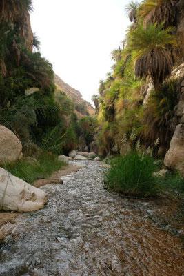 eine traumhafte Wanderung durch den Canyon...