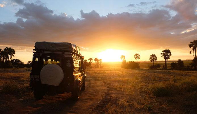 Safari bis zum Sonnenuntergang...