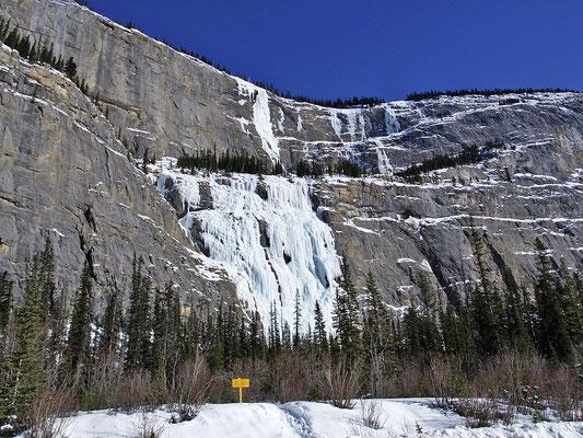 Columbia Icefield, Wasserfall