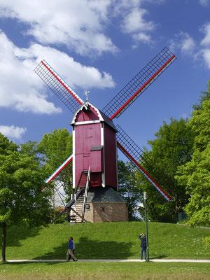 Brügge, Windmühle