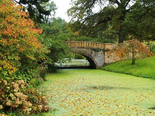 Park von Schloss Minterne House, Dorchester