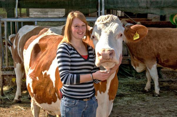 Unsere Kühe sind sehr anhänglich...