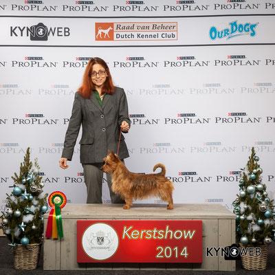 BOB Kerstshow 2014 in Cuik