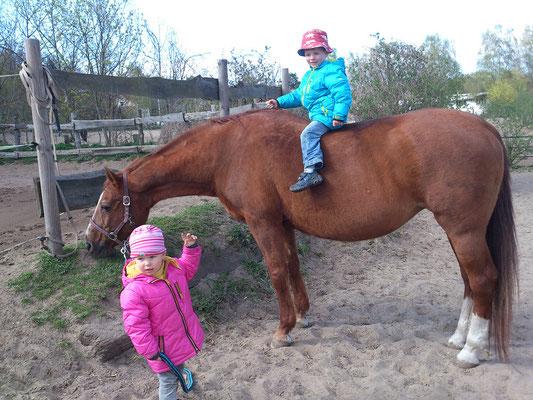 Lady mit Margaretes Enkelkindern - ein ganz liebes Pferd!