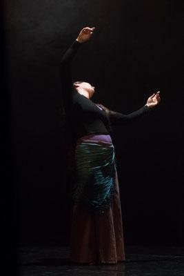 Spectacle Danse et Arts Vivants Téléthon 2016 (Photos Javier Belmont)