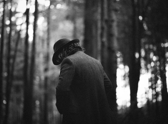 Studies in the woods III
