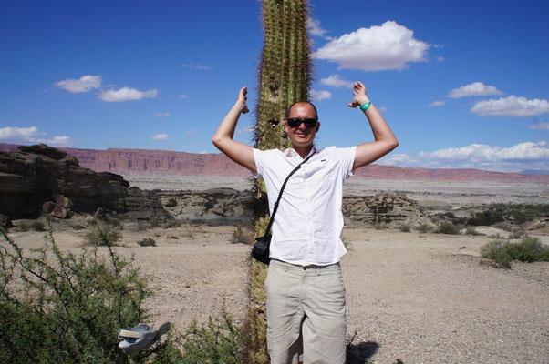 Des cactus à perte de vue !