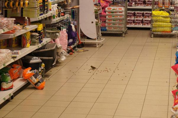 Un paquet de graines est percé au supermarché !