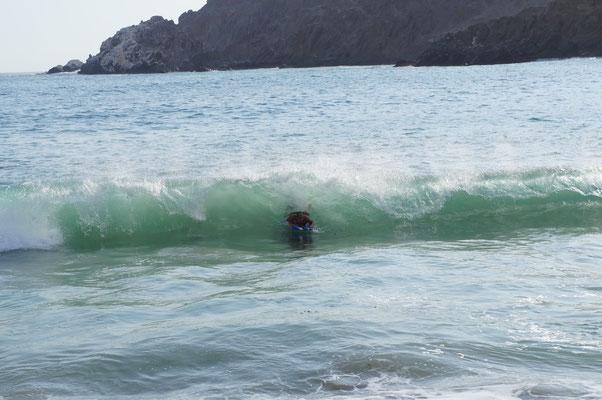 ... ou surf pour d'autres !