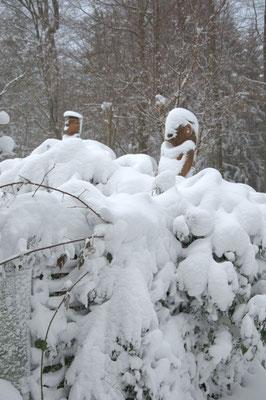 und die Wesen auf dem Dach versinken völlig im Schnee