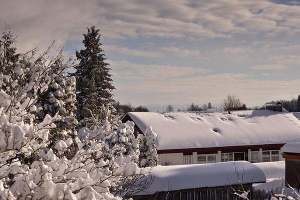 Blick in die Ferne über den Schnee hinweg