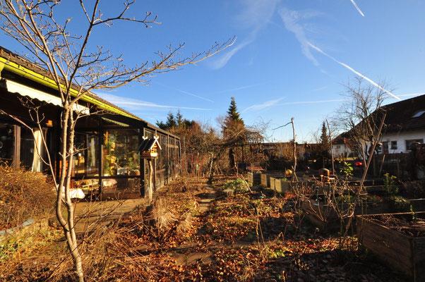 KW3-2020Die Sonne scheint immer noch, heute Morgen Alpenblick Gartentemperatur 7°C